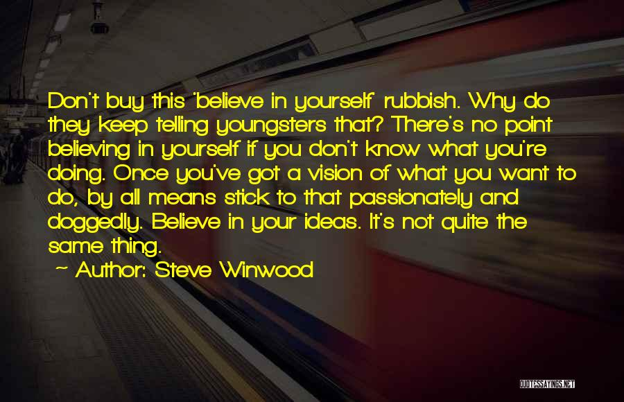 What You Know Quotes By Steve Winwood