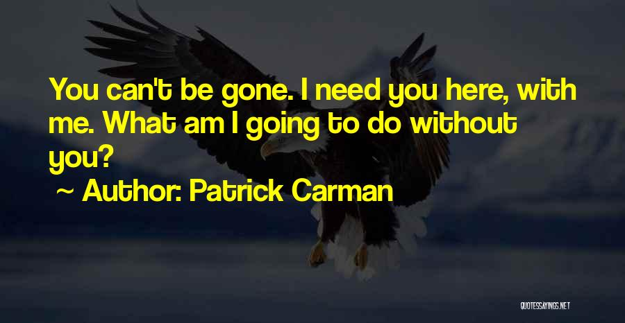 What You Need To Be Happy Quotes By Patrick Carman