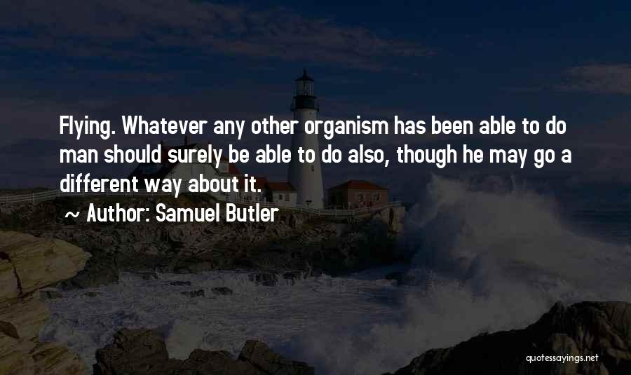 Whatever It May Be Quotes By Samuel Butler