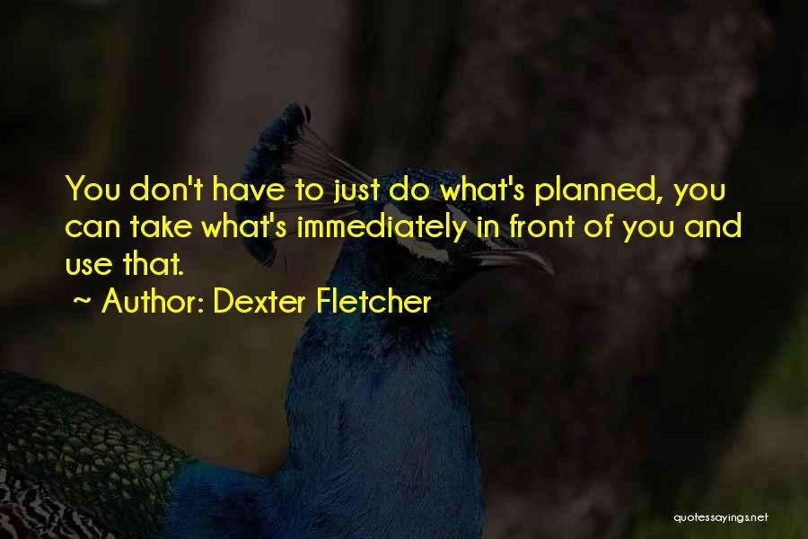 What's In Front Of You Quotes By Dexter Fletcher