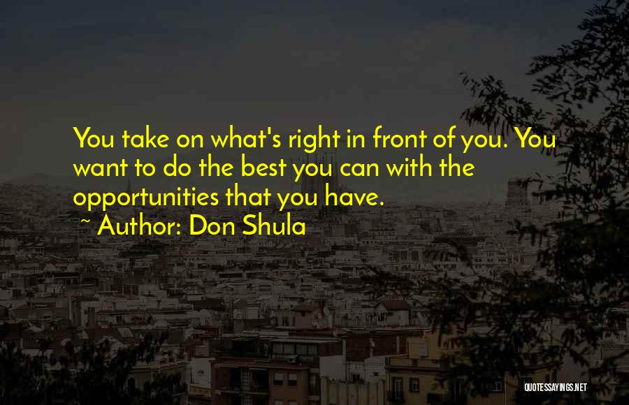 What's In Front Of You Quotes By Don Shula