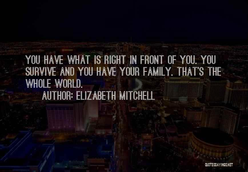 What's In Front Of You Quotes By Elizabeth Mitchell