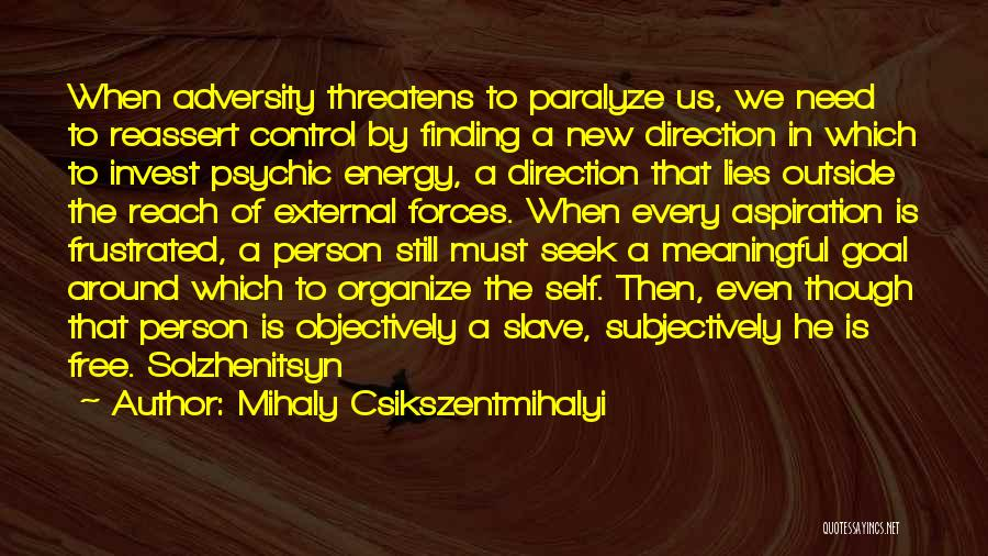 When He Lies Quotes By Mihaly Csikszentmihalyi