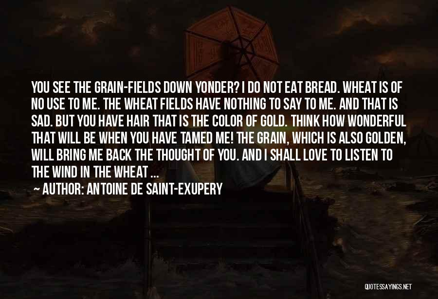 When I See You Sad Quotes By Antoine De Saint-Exupery