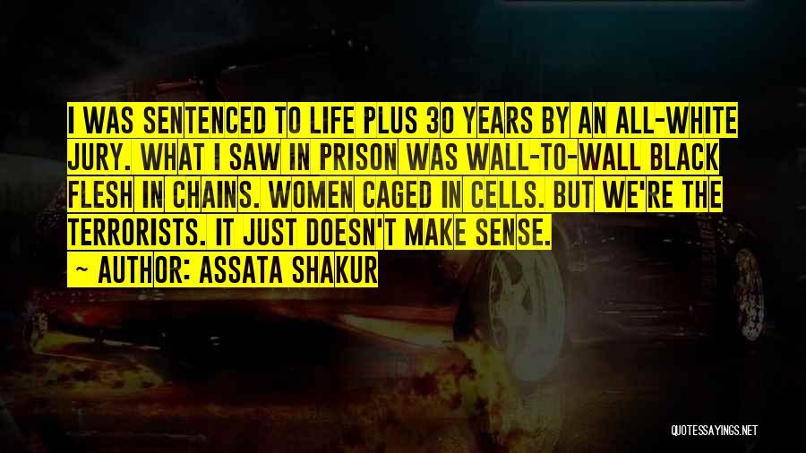 When Life Doesn't Make Sense Quotes By Assata Shakur
