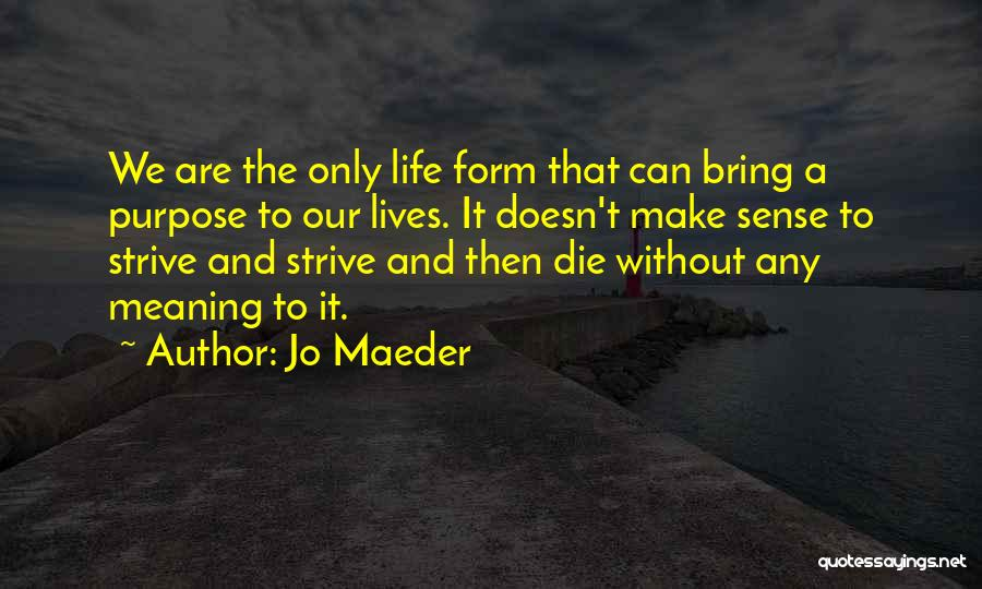 When Life Doesn't Make Sense Quotes By Jo Maeder