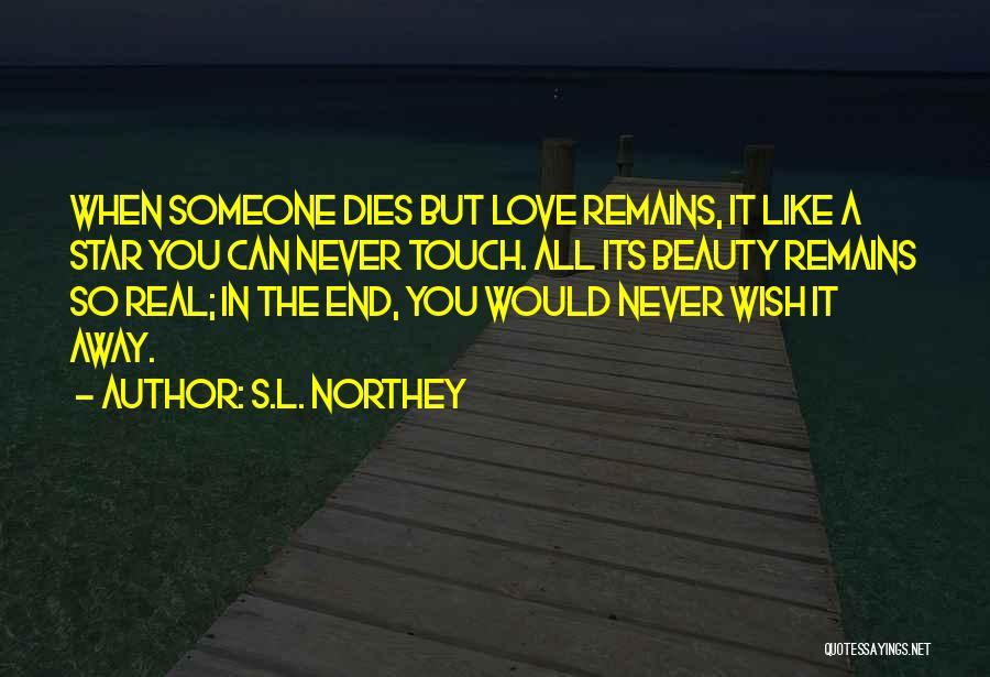 When Only Love Remains Quotes By S.L. Northey