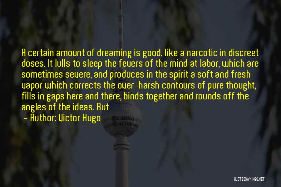 When U Cant Sleep Quotes By Victor Hugo