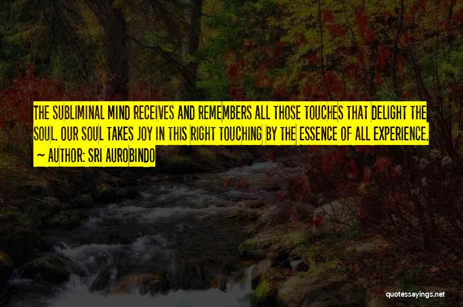 When You Do Something Right No One Remembers Quotes By Sri Aurobindo
