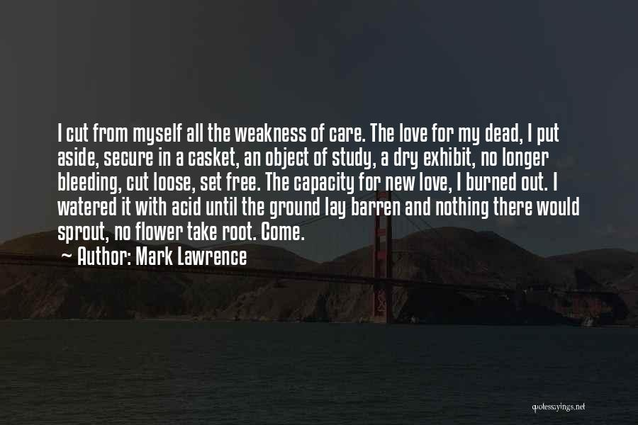 When You No Longer Care Quotes By Mark Lawrence