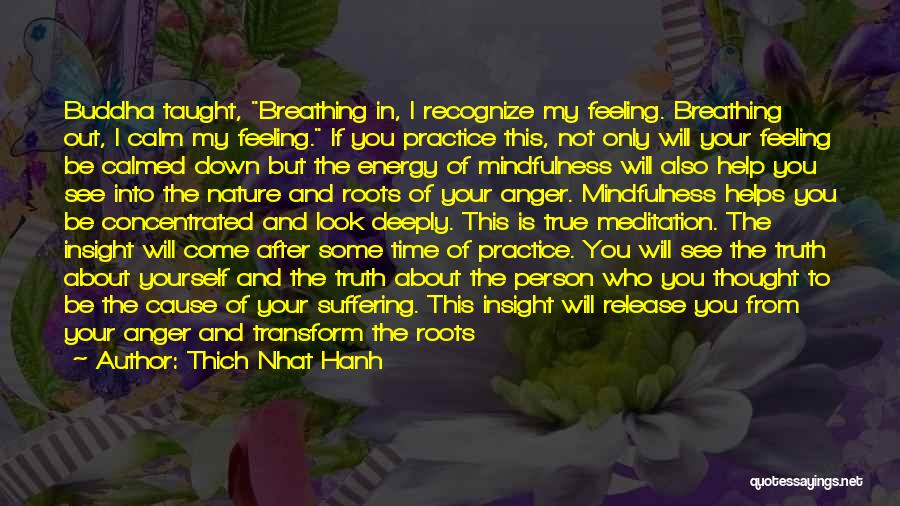 When You're Feeling Down And Out Quotes By Thich Nhat Hanh