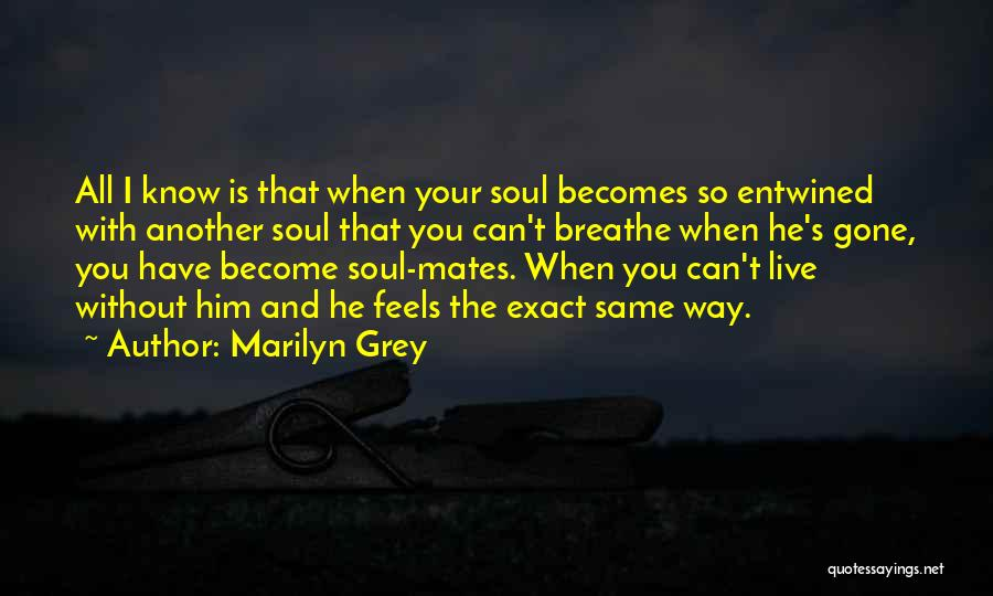 When You're Gone Love Quotes By Marilyn Grey