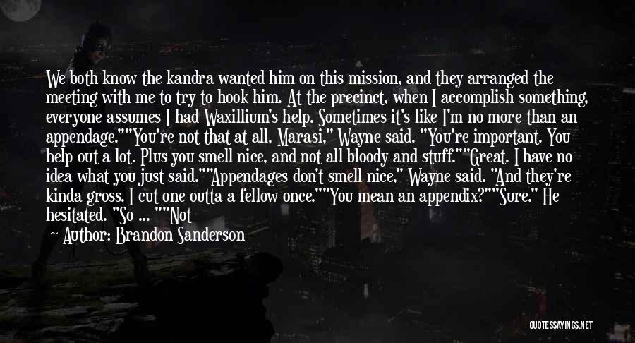 When You're Not Important To Him Quotes By Brandon Sanderson