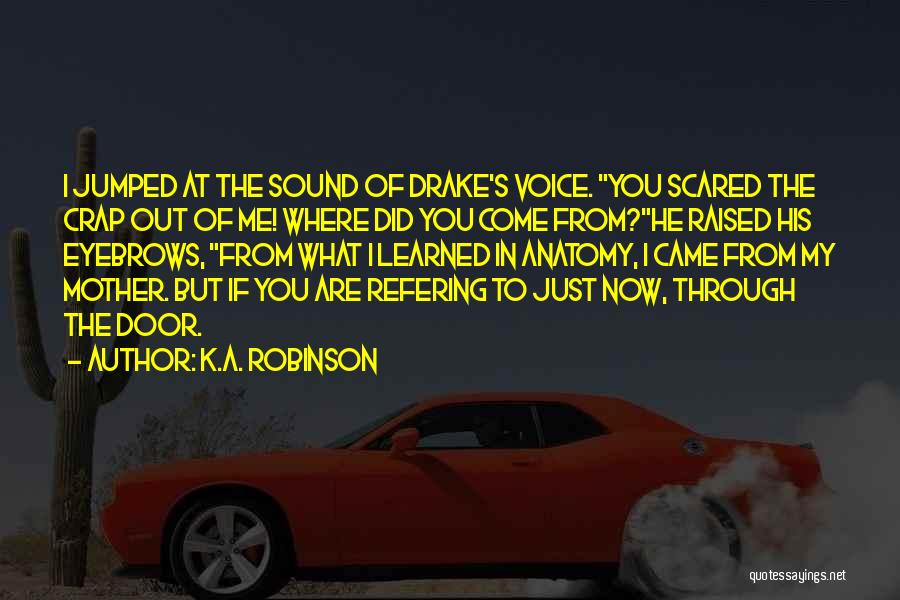 Where Did You Come From Quotes By K.A. Robinson