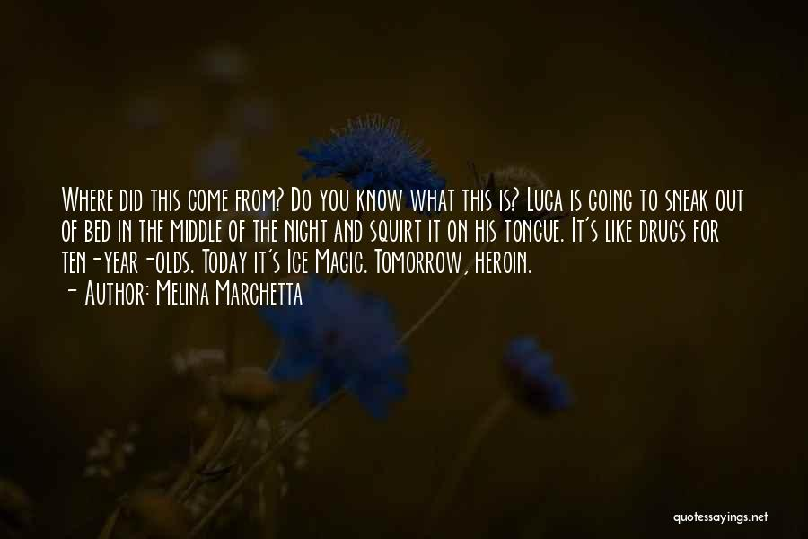 Where Did You Come From Quotes By Melina Marchetta