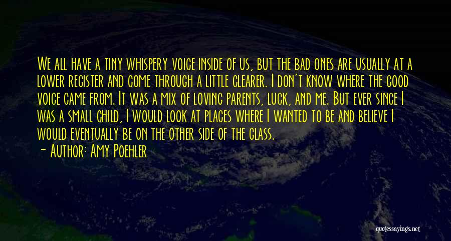 Where We Came From Quotes By Amy Poehler
