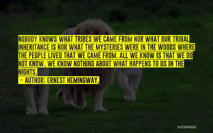 Where We Came From Quotes By Ernest Hemingway,