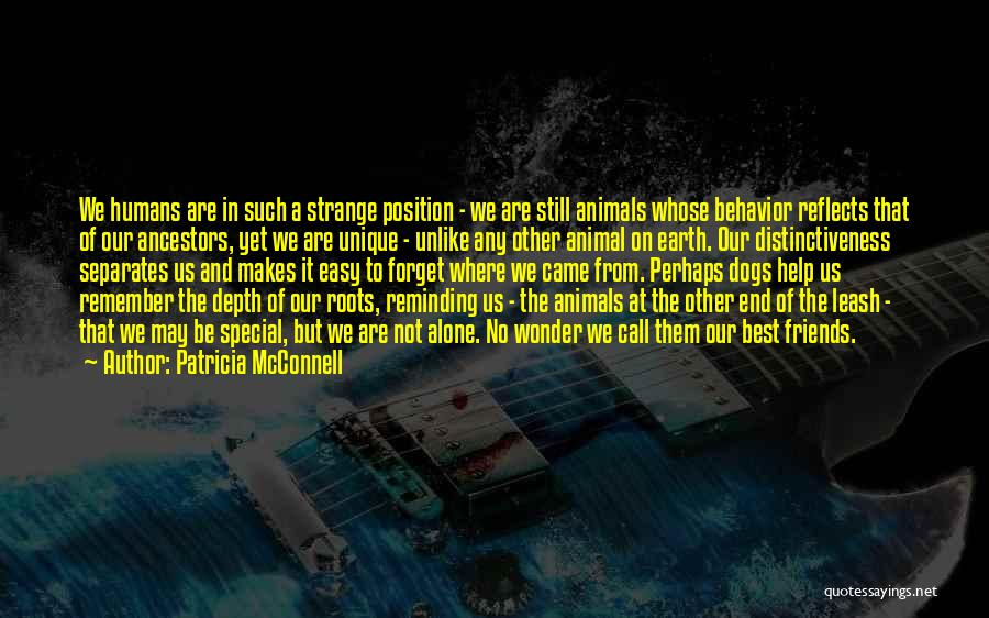 Where We Came From Quotes By Patricia McConnell