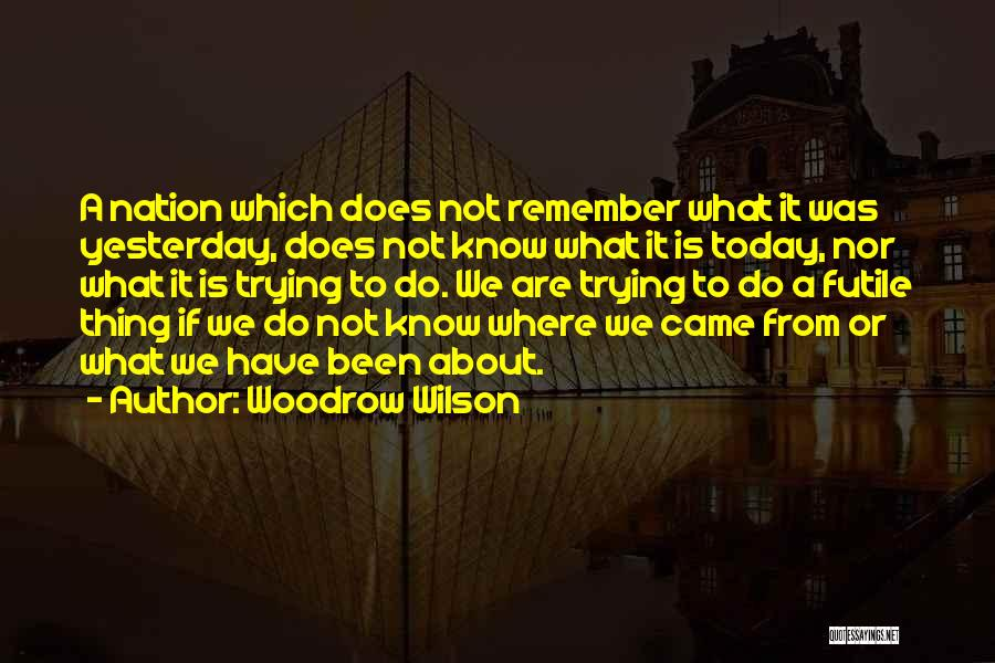 Where We Came From Quotes By Woodrow Wilson