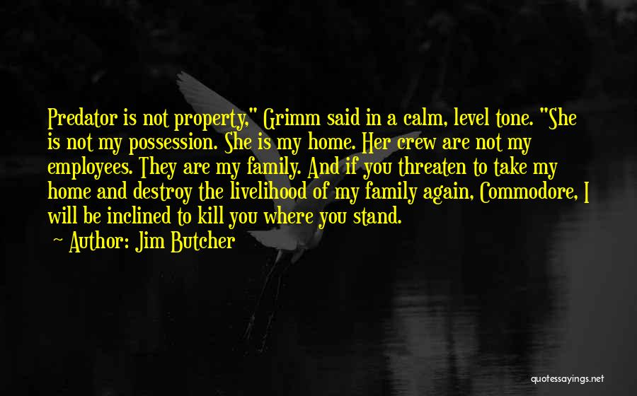 Where You Stand Quotes By Jim Butcher