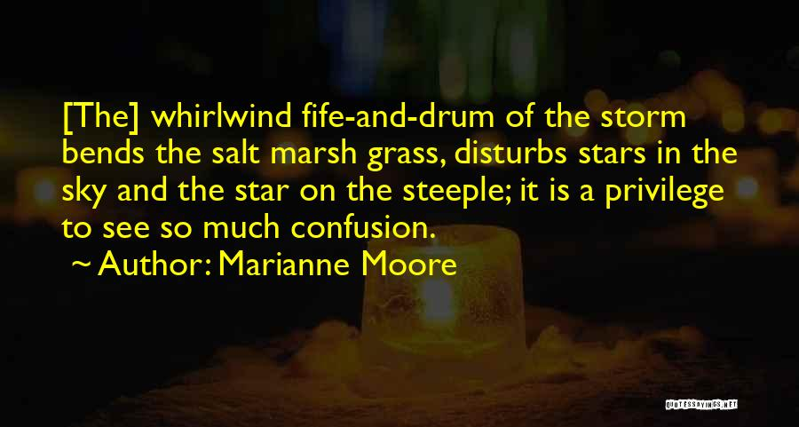 Whirlwind Quotes By Marianne Moore