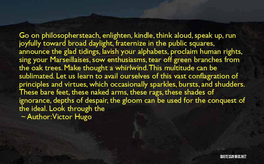 Whirlwind Quotes By Victor Hugo