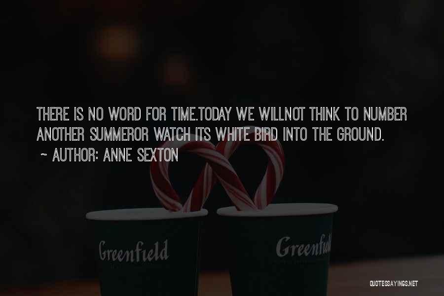 White Bird Quotes By Anne Sexton