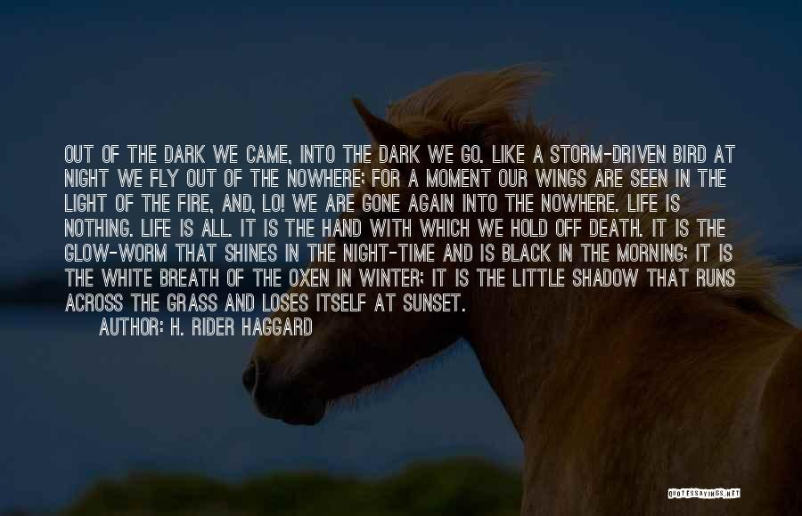 White Bird Quotes By H. Rider Haggard