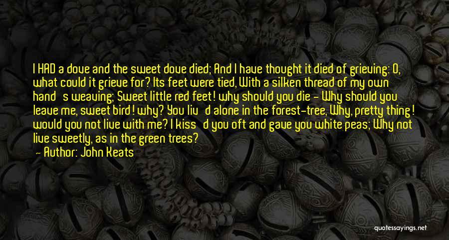 White Bird Quotes By John Keats