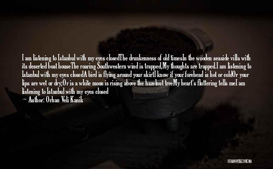 White Bird Quotes By Orhan Veli Kanik