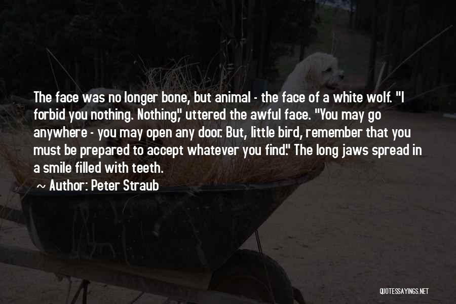 White Bird Quotes By Peter Straub