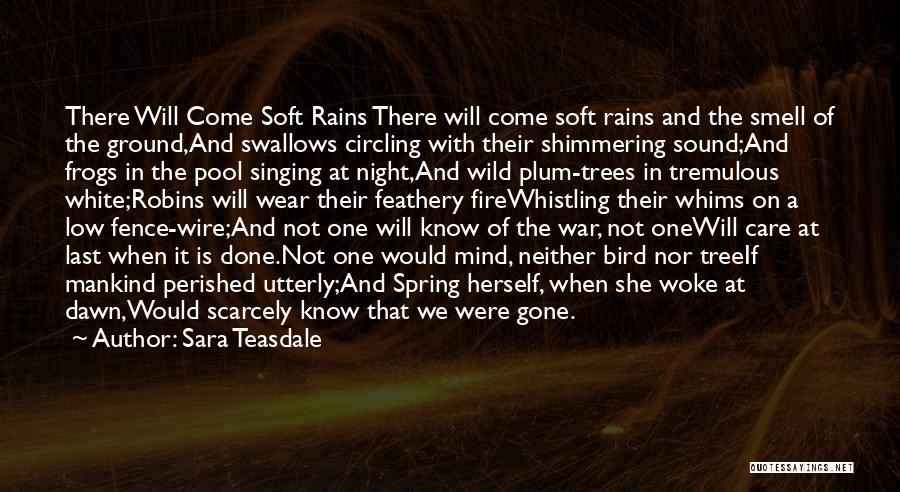 White Bird Quotes By Sara Teasdale