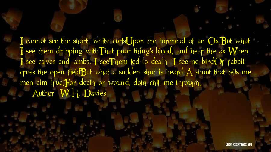 White Bird Quotes By W.H. Davies