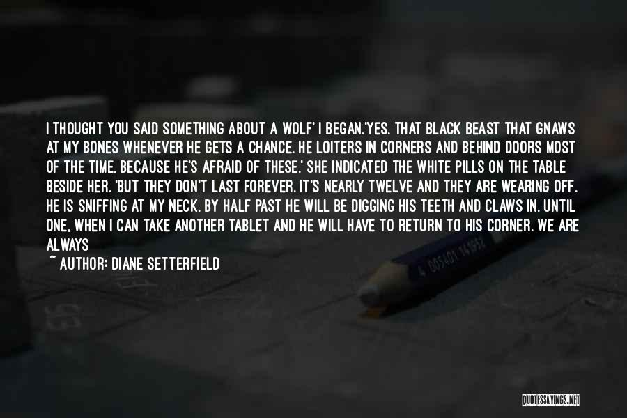 White Wolf Quotes By Diane Setterfield