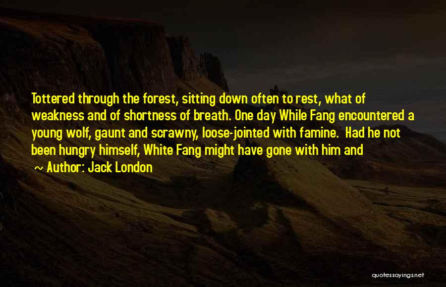White Wolf Quotes By Jack London