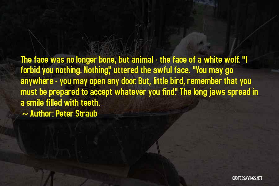 White Wolf Quotes By Peter Straub