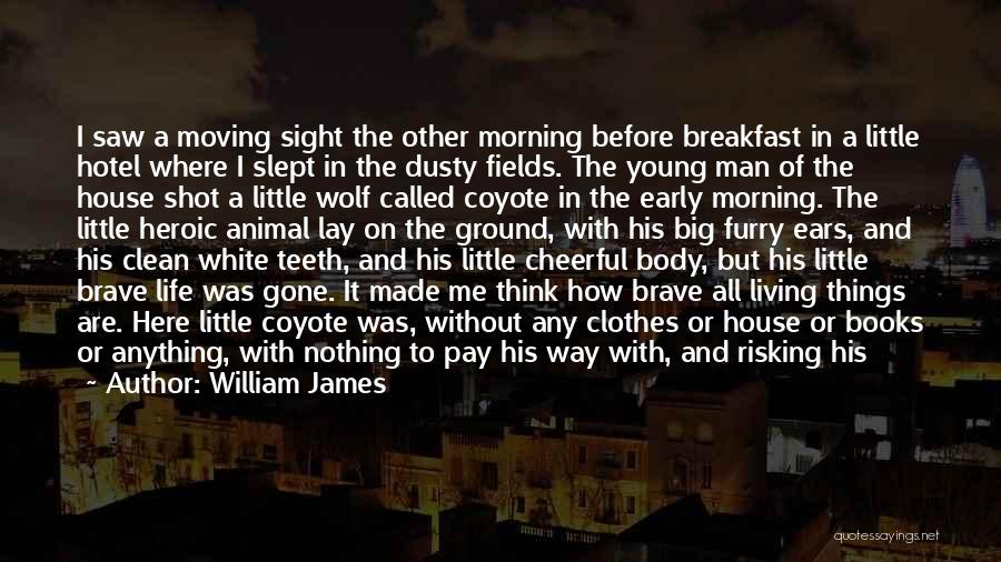 White Wolf Quotes By William James