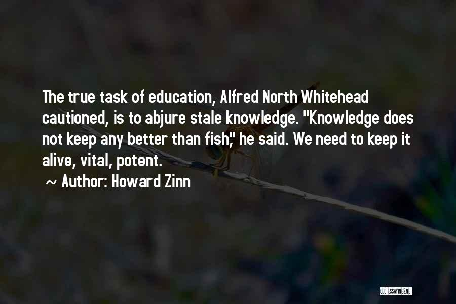 Whitehead Quotes By Howard Zinn