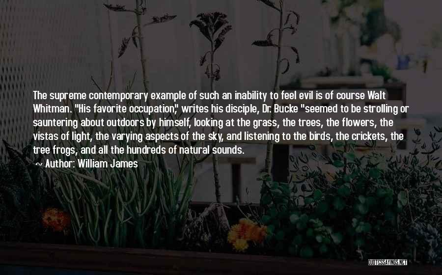 Whitman Walt Quotes By William James