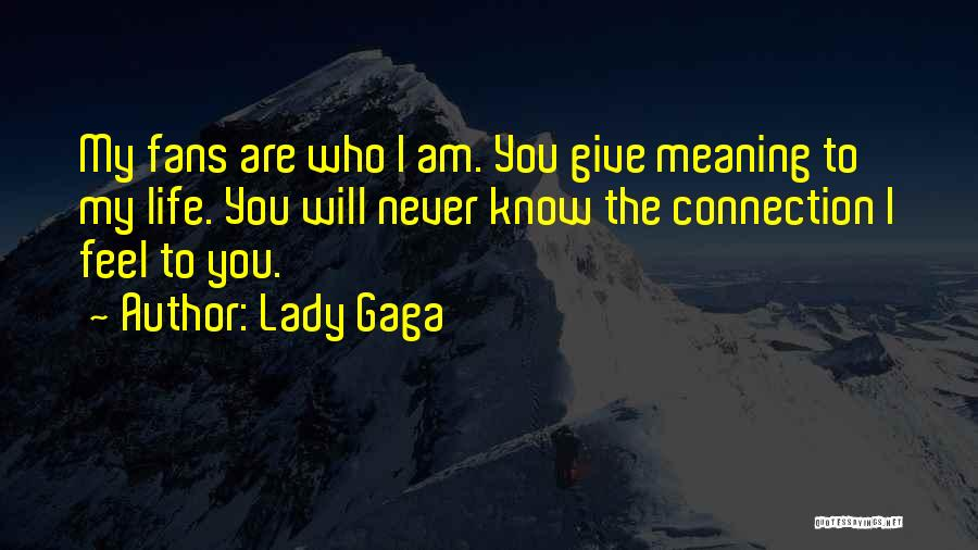 Who Am I Quotes By Lady Gaga
