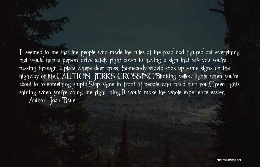 Who Hurt You Quotes By Joan Bauer