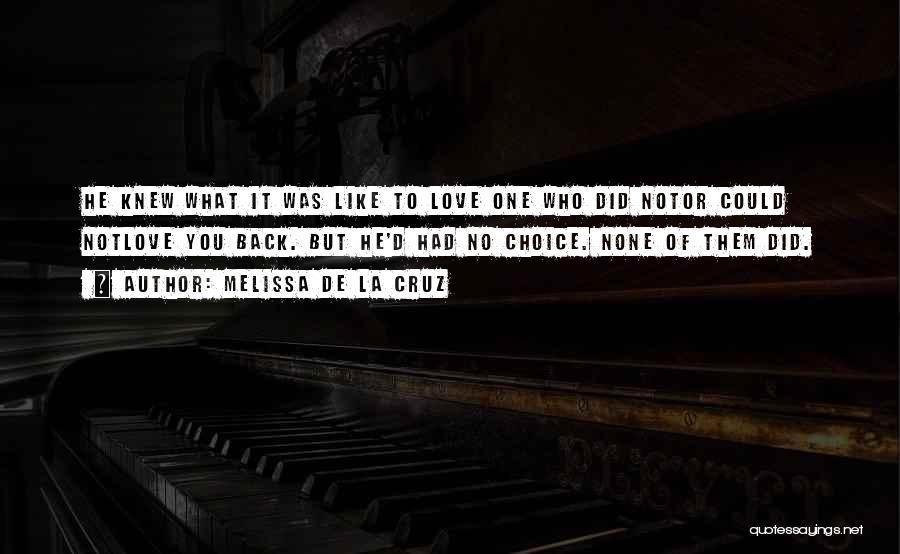 Who Hurt You Quotes By Melissa De La Cruz
