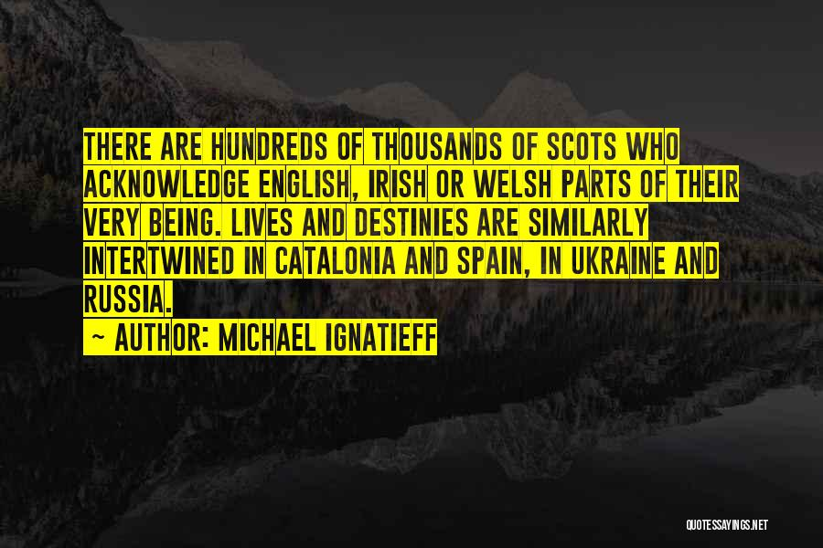 Who Irish Quotes By Michael Ignatieff