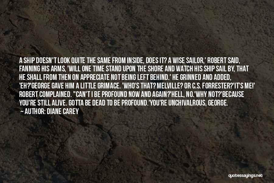 Who Left Me Quotes By Diane Carey