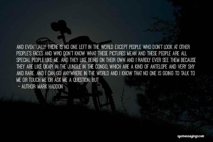 Who Left Me Quotes By Mark Haddon