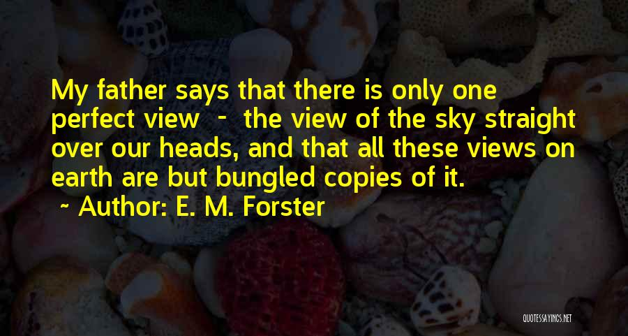 Who Says You Are Not Perfect Quotes By E. M. Forster