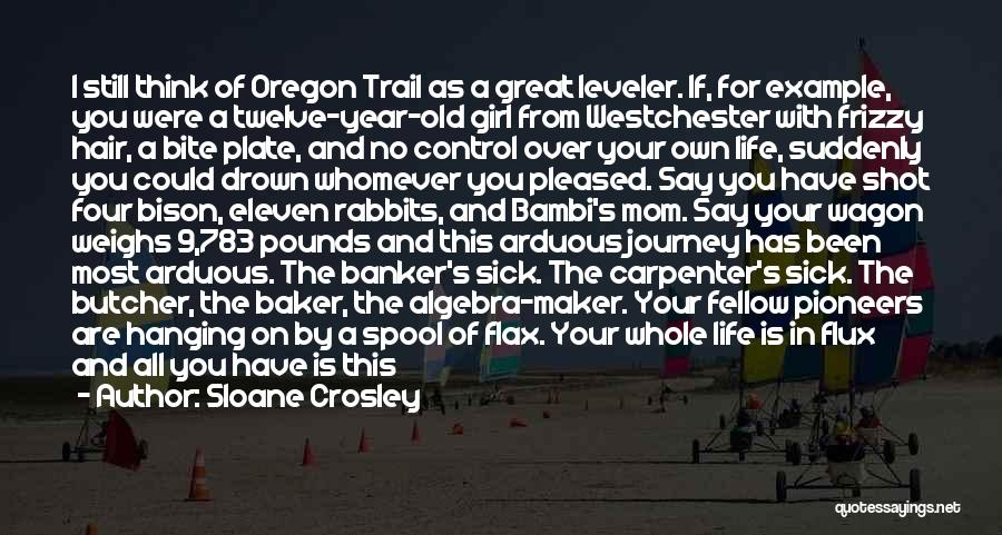 Whomever Quotes By Sloane Crosley