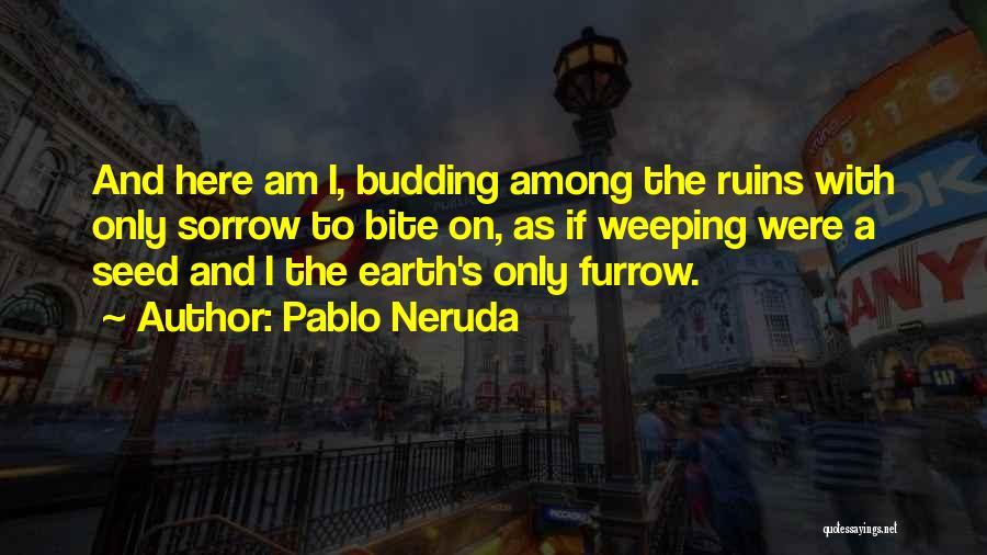 Why Are We Here On Earth Quotes By Pablo Neruda