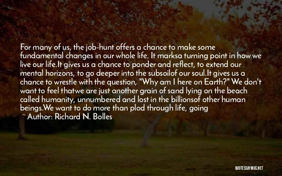 Why Are We Here On Earth Quotes By Richard N. Bolles