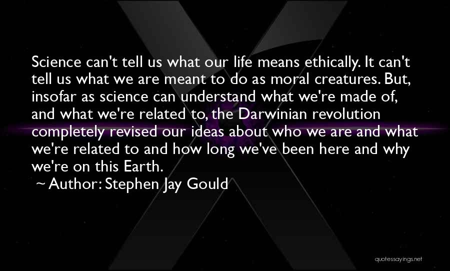 Why Are We Here On Earth Quotes By Stephen Jay Gould